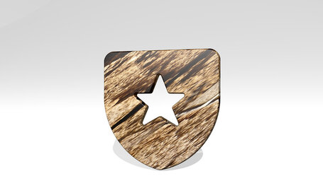 protection shield star