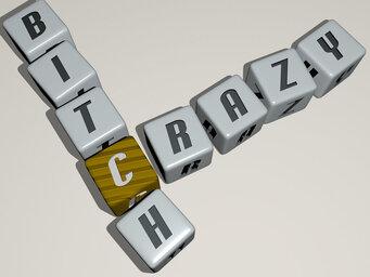 crazy bitch