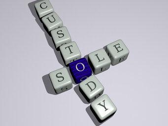 sole custody