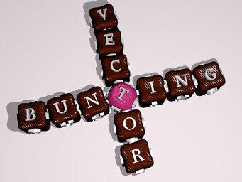 bunting vector