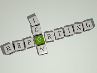reporting icon