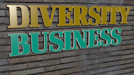 diversity business