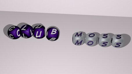 club moss