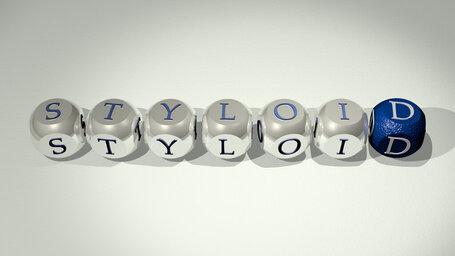 styloid