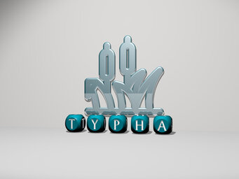 Typha