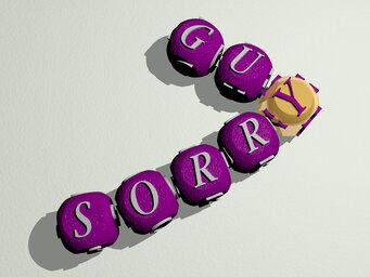 sorry guy