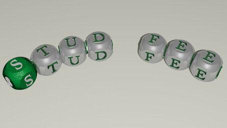 stud fee