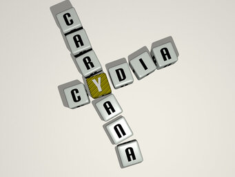 Cydia caryana
