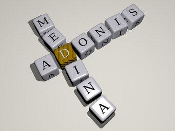 Adonis Medina