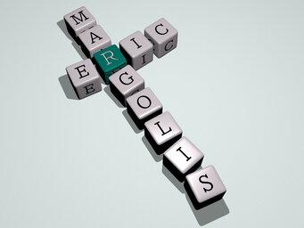 Eric Margolis