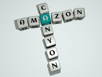 Amazon Canyon