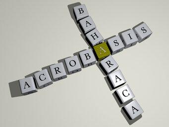 Acrobasis baharaca