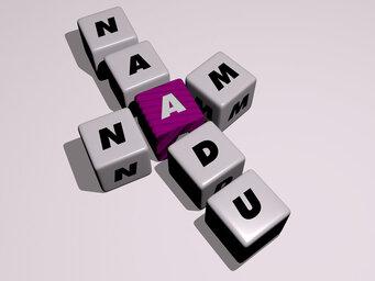 Nam Naadu
