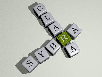 Sybra clara