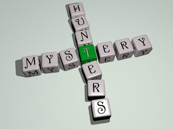 Mystery Hunters