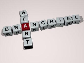 Branchial heart