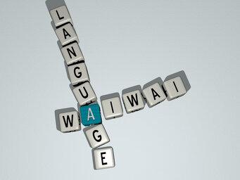 Waiwai language