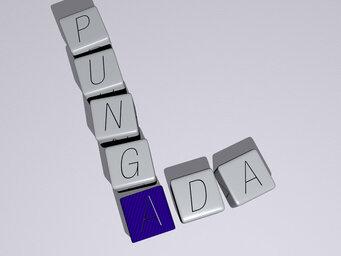 Ada Punga