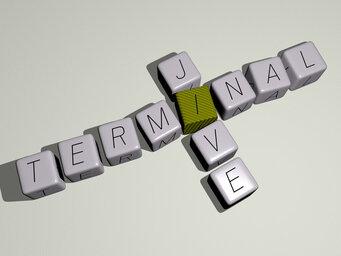 Terminal Jive