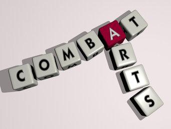 Combat arts
