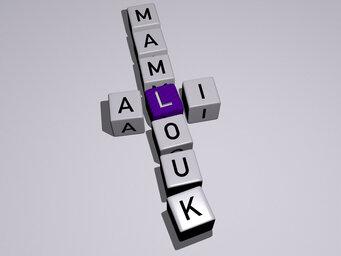 Ali Mamlouk