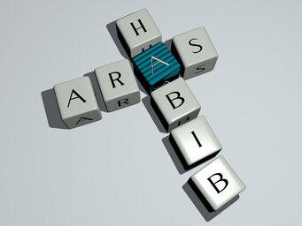 Aras Habib