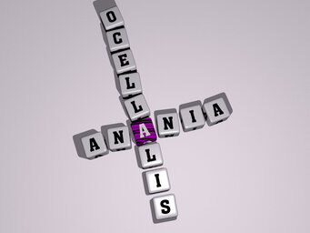 Anania ocellalis
