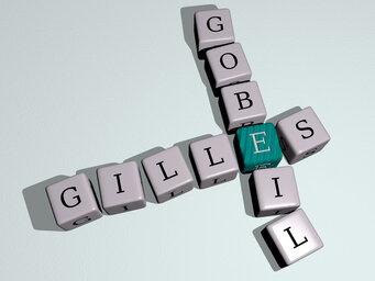 Gilles Gobeil