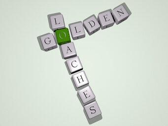 Golden loaches