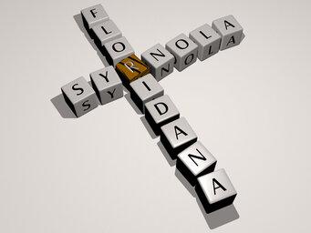 Syrnola floridana