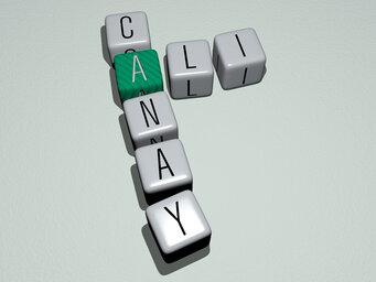 Ali Canay