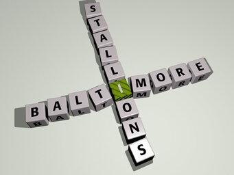 Baltimore Stallions