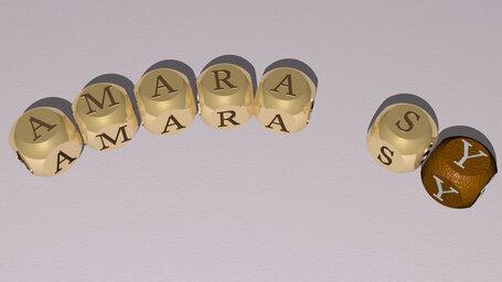 Amara Sy
