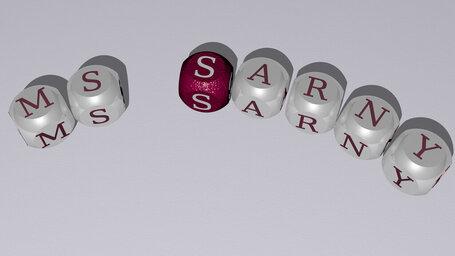 MS Sarny