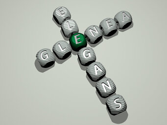 Glenea elegans