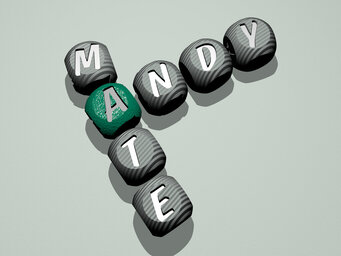 Andy Mate