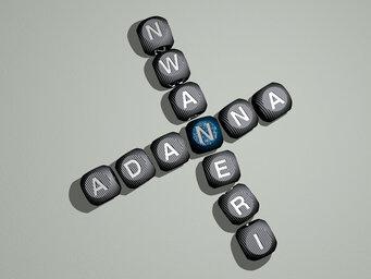 Adanna Nwaneri