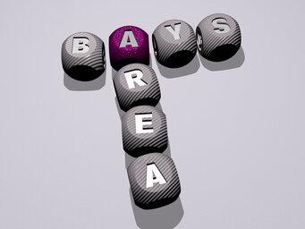 Bays Area