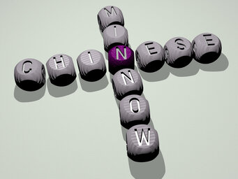 Chinese minnow