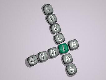 Cydia chelias