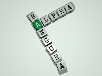 Alpha Bangura