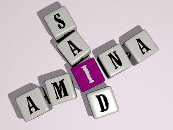 Amina Said