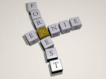 Ernie Forrest