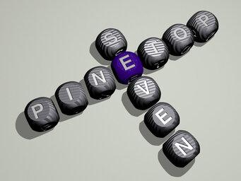 Pinetop Seven