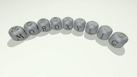 moroxylic