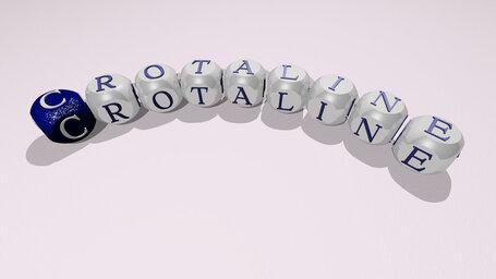 crotaline