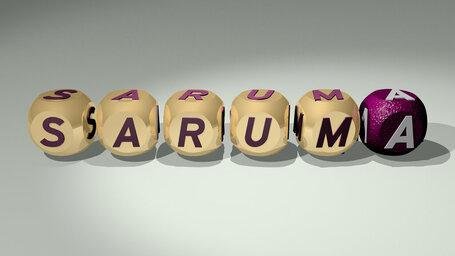 Saruma
