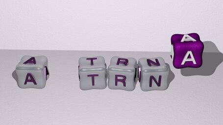A tRNA