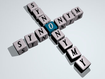 synonym synonymy